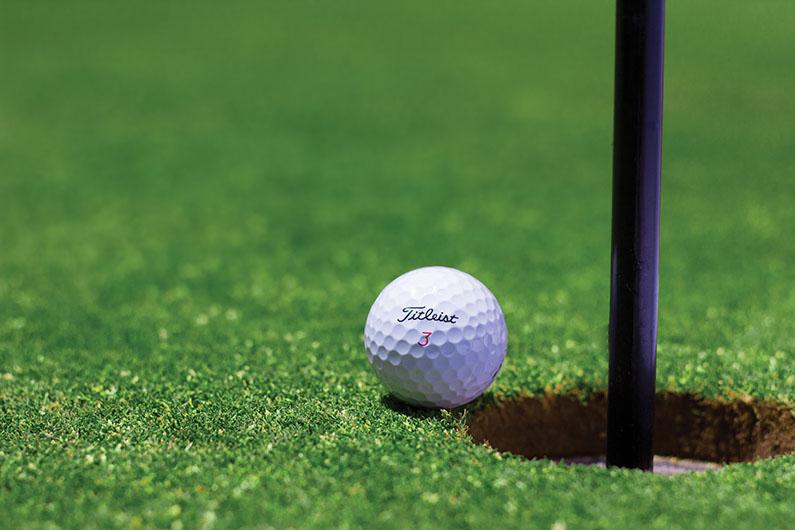 website development golf coach